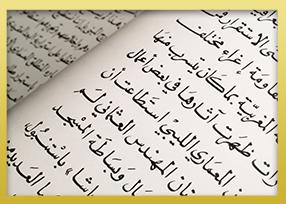 Modern Standard Arabic Course (MSA/Fusha)